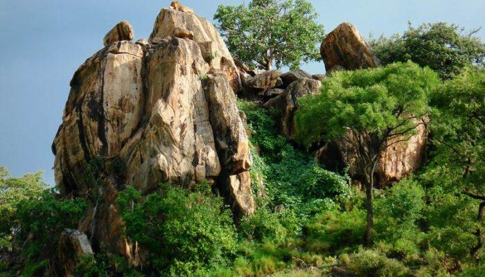 Mount Elgon National Park (2)