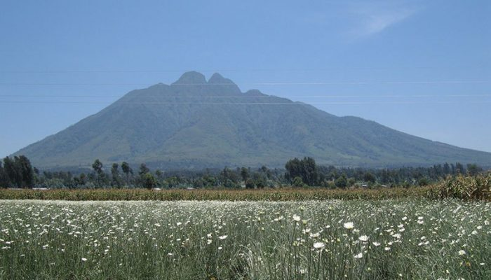virunga national park (4)