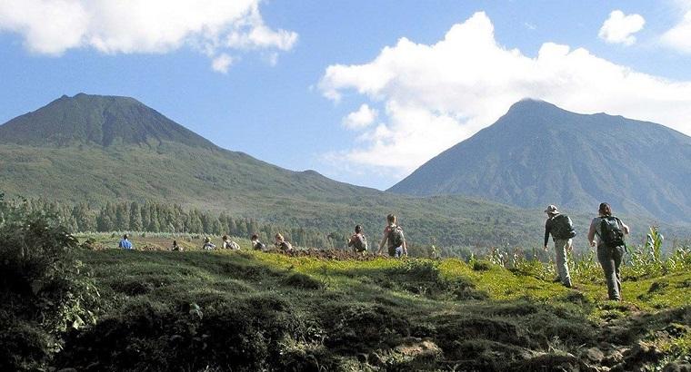 4 Days Rwanda Golden Monkey Tracking tour